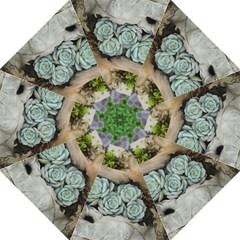 Plant Succulent Plants Flower Wood Hook Handle Umbrellas (Medium)