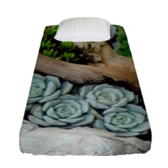 Plant Succulent Plants Flower Wood Fitted Sheet (Single Size)