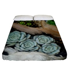 Plant Succulent Plants Flower Wood Fitted Sheet (Queen Size)