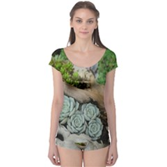 Plant Succulent Plants Flower Wood Boyleg Leotard
