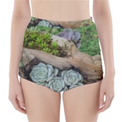 Plant Succulent Plants Flower Wood High-Waisted Bikini Bottoms
