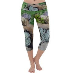 Plant Succulent Plants Flower Wood Capri Yoga Leggings