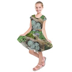 Plant Succulent Plants Flower Wood Kids  Short Sleeve Dress