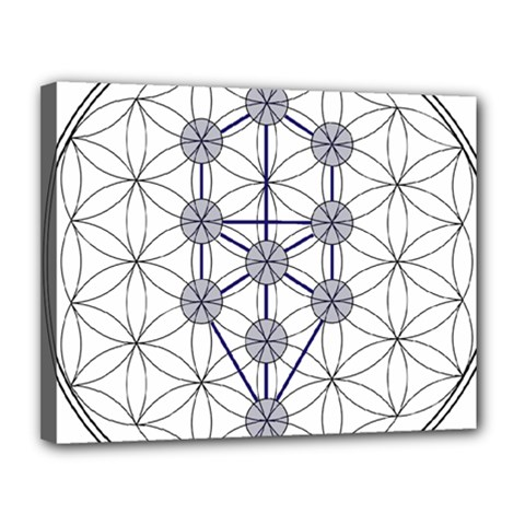 Tree Of Life Flower Of Life Stage Canvas 14  x 11