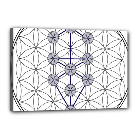 Tree Of Life Flower Of Life Stage Canvas 18  x 12
