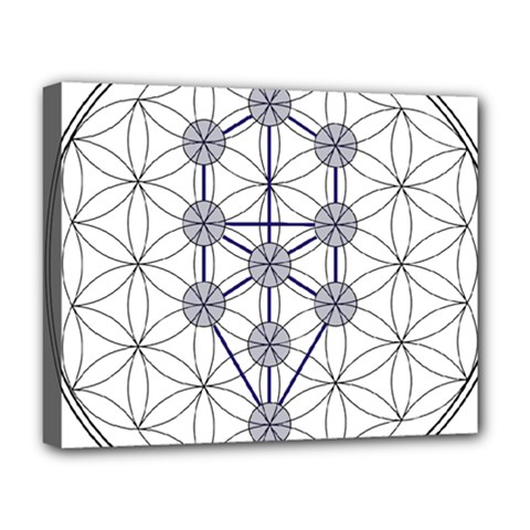 Tree Of Life Flower Of Life Stage Deluxe Canvas 20  x 16