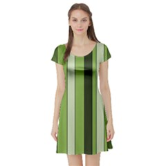 Greenery Stripes Pattern 8000 Vertical Stripe Shades Of Spring Green Color Short Sleeve Skater Dress