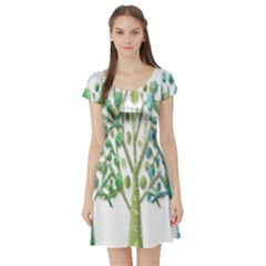 Magical green trees Short Sleeve Skater Dress