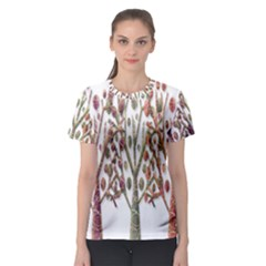 Magical autumn trees Women s Sport Mesh Tee