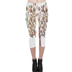 Magical autumn trees Capri Leggings
