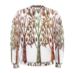 Magical autumn trees Men s Sweatshirt