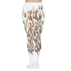 Magical autumn trees Women s Tights