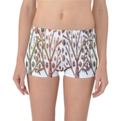 Magical autumn trees Boyleg Bikini Bottoms