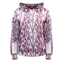 Magical pink trees Women s Pullover Hoodie