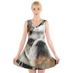 Bulldog V-Neck Sleeveless Skater Dress