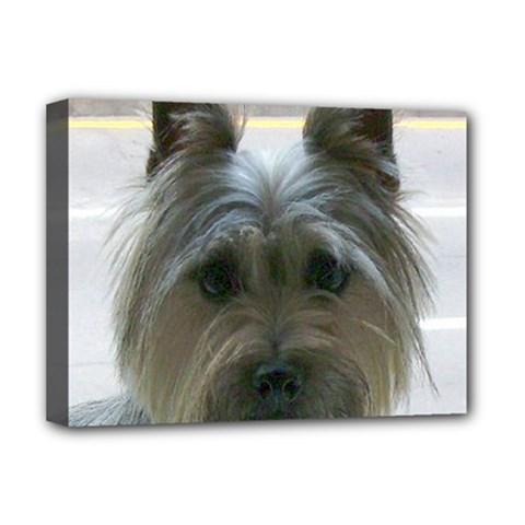 Cairn Terrier Deluxe Canvas 16  x 12
