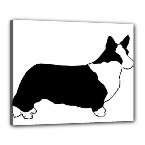 Ccardigan Welsh Corgi Silo Color Canvas 20  x 16