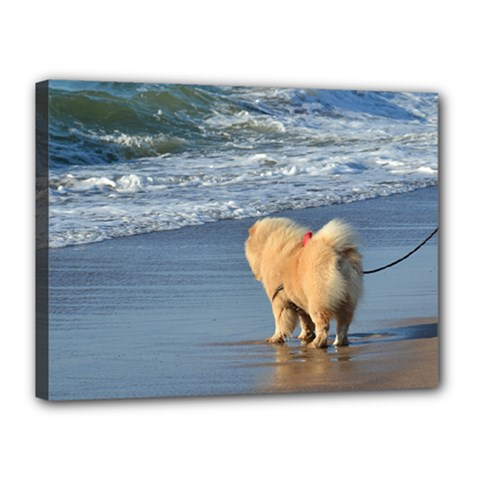 Chow Chow On Beach Canvas 16  x 12
