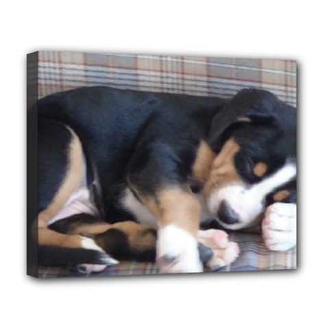 Greater Swiss Mountain Dog Puppy Deluxe Canvas 20  x 16