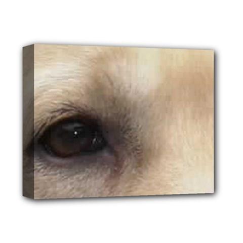 Yellow Labrador Eyes Deluxe Canvas 14  x 11