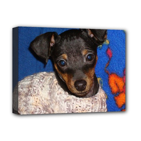 Min Pin In Sweater Deluxe Canvas 16  x 12