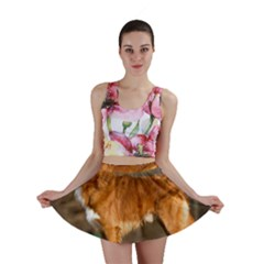 Duck Toller Full Mini Skirt