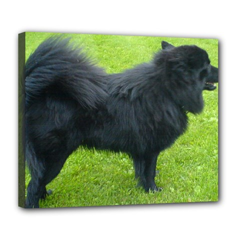 Swedish Lapphund Full Deluxe Canvas 24  x 20