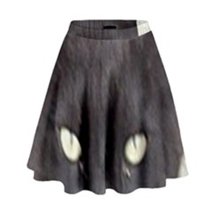 Manx High Waist Skirt