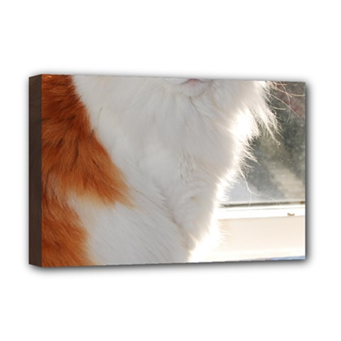 Norwegian Forest Cat Sitting 4 Deluxe Canvas 18  x 12