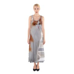 Norwegian Forest Cat Sitting 4 Sleeveless Maxi Dress