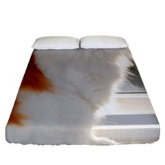 Norwegian Forest Cat Sitting 4 Fitted Sheet (Queen Size)