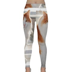 Norwegian Forest Cat Sitting 4 Classic Yoga Leggings