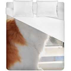 Norwegian Forest Cat Sitting 4 Duvet Cover (California King Size)
