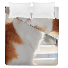Norwegian Forest Cat Sitting 4 Duvet Cover Double Side (Queen Size)