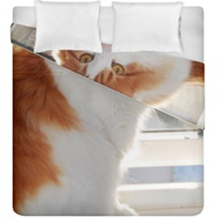 Norwegian Forest Cat Sitting 4 Duvet Cover Double Side (King Size)