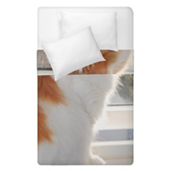 Norwegian Forest Cat Sitting 4 Duvet Cover Double Side (Single Size)