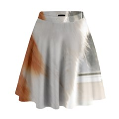 Norwegian Forest Cat Sitting 4 High Waist Skirt