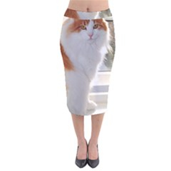 Norwegian Forest Cat Sitting 4 Velvet Midi Pencil Skirt