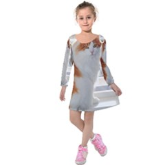 Norwegian Forest Cat Sitting 4 Kids  Long Sleeve Velvet Dress