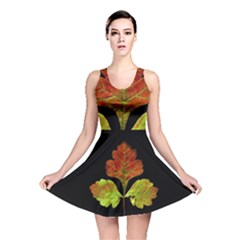 Autumn Beauty Reversible Skater Dress