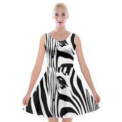 Animal Cute Pattern Art Zebra Velvet Skater Dress
