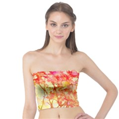 Monotype Art Pattern Leaves Colored Autumn Tube Top