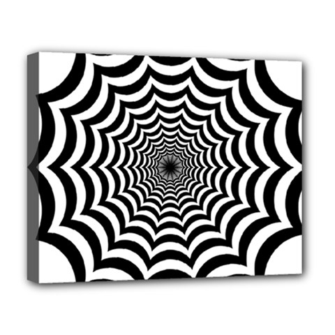 Spider Web Hypnotic Deluxe Canvas 20  X 16