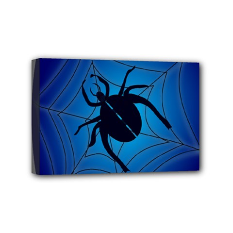 Spider On Web Mini Canvas 6  X 4