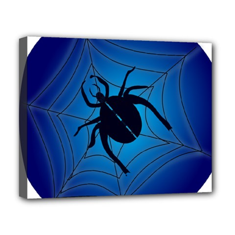 Spider On Web Deluxe Canvas 20  X 16
