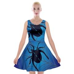 Spider On Web Velvet Skater Dress