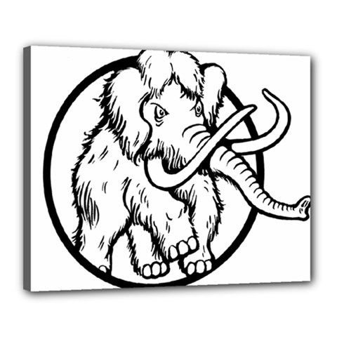 Mammoth Elephant Strong Canvas 20  X 16