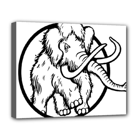 Mammoth Elephant Strong Deluxe Canvas 20  X 16