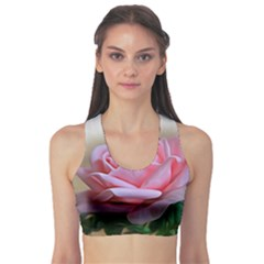 Rose Pink Flowers Pink Saturday Sports Bra