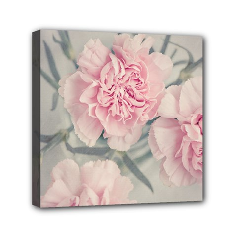 Cloves Flowers Pink Carnation Pink Mini Canvas 6  X 6